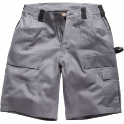 Short Mixte Grafter Duo Tone Dickies